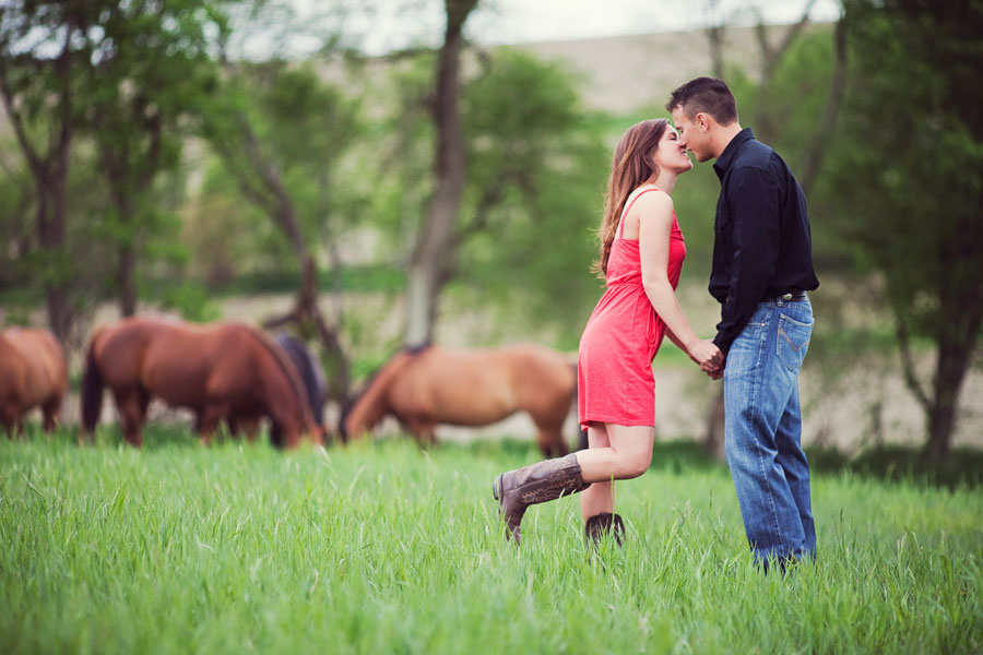 kissing in a field by horses
