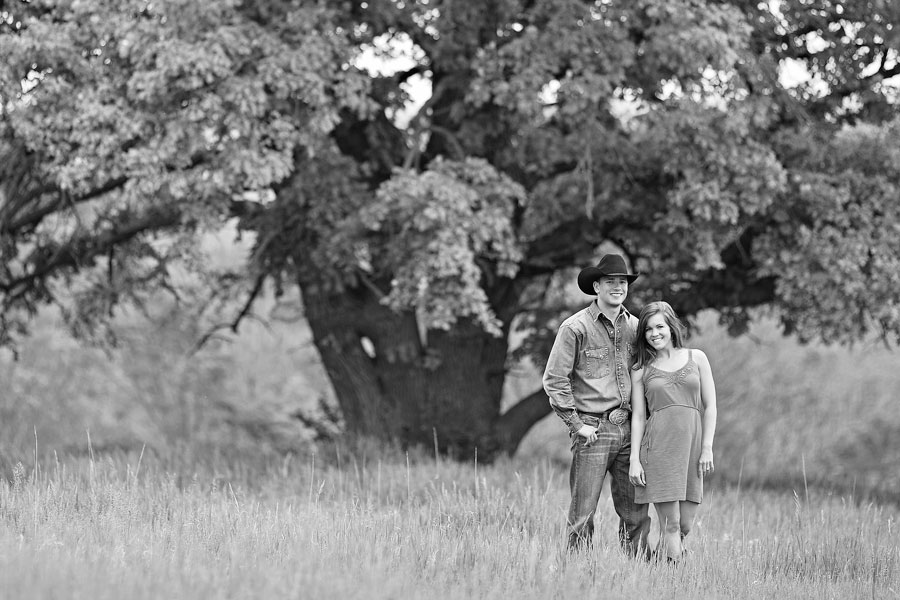 lonesome tree engagement photo